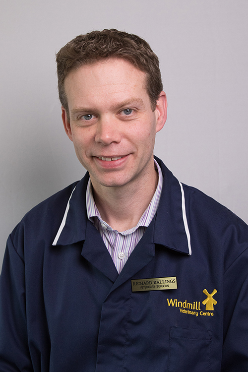Dr Richard Rallings   Advanced Practitioner in Small Animal Medicine Thumbnail